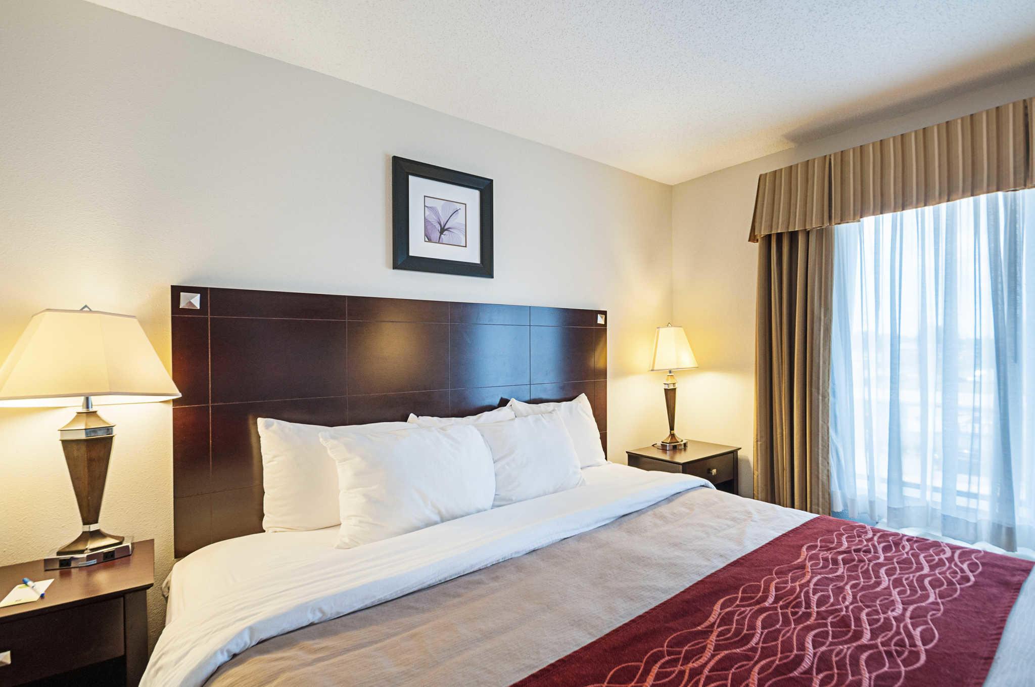 Comfort Inn & Suites Cambridge image 17