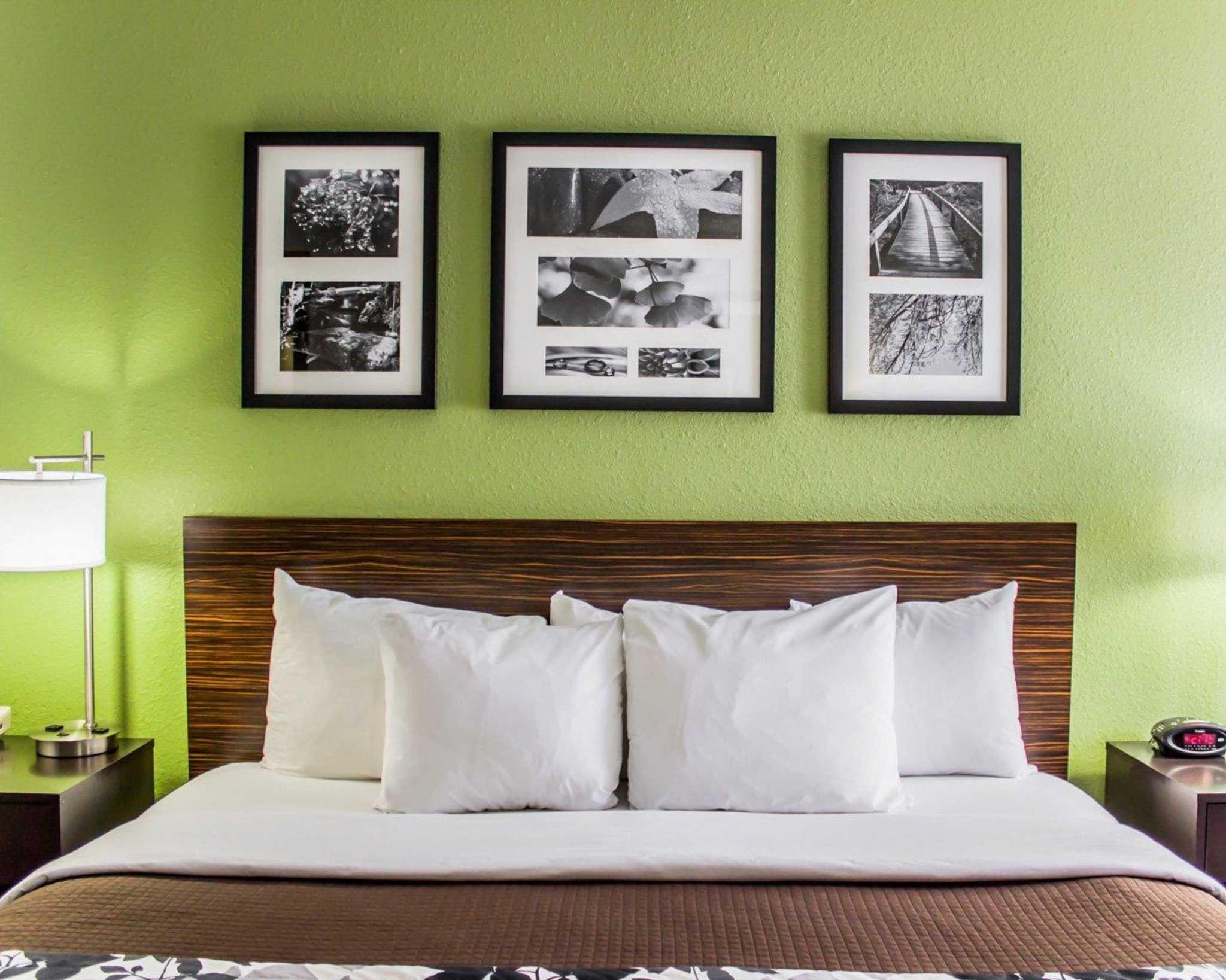 Sleep Inn image 12