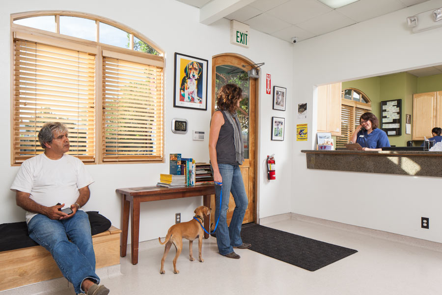 VCA Care Specialty and Emergency Animal Hospital