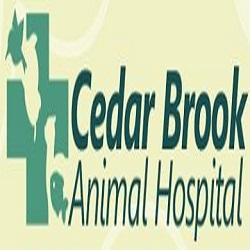 Cedar Brook Animal Hospital
