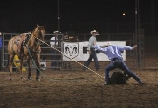 Red Desert Roundup Rodeo image 5