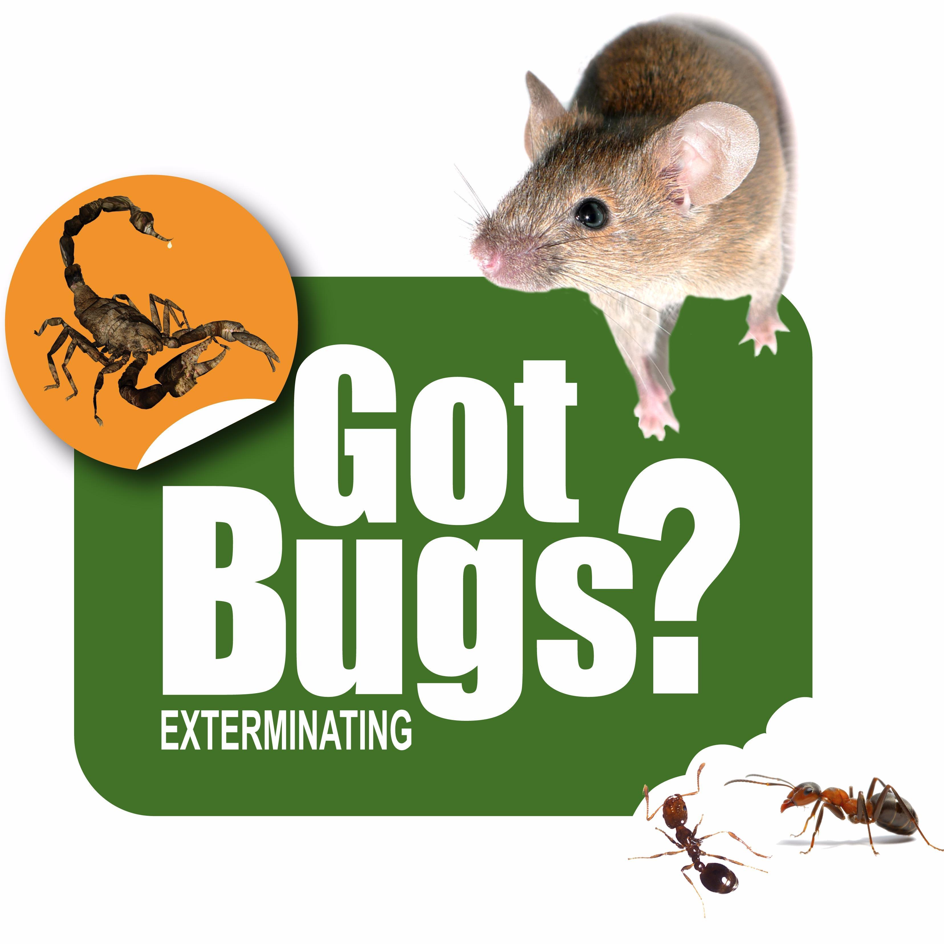 Got Bugs? Exterminating