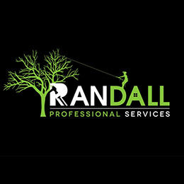 Randall Professional Services
