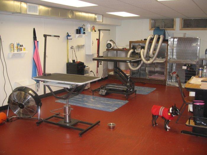 VCA Riverside Veterinary Hospital image 2