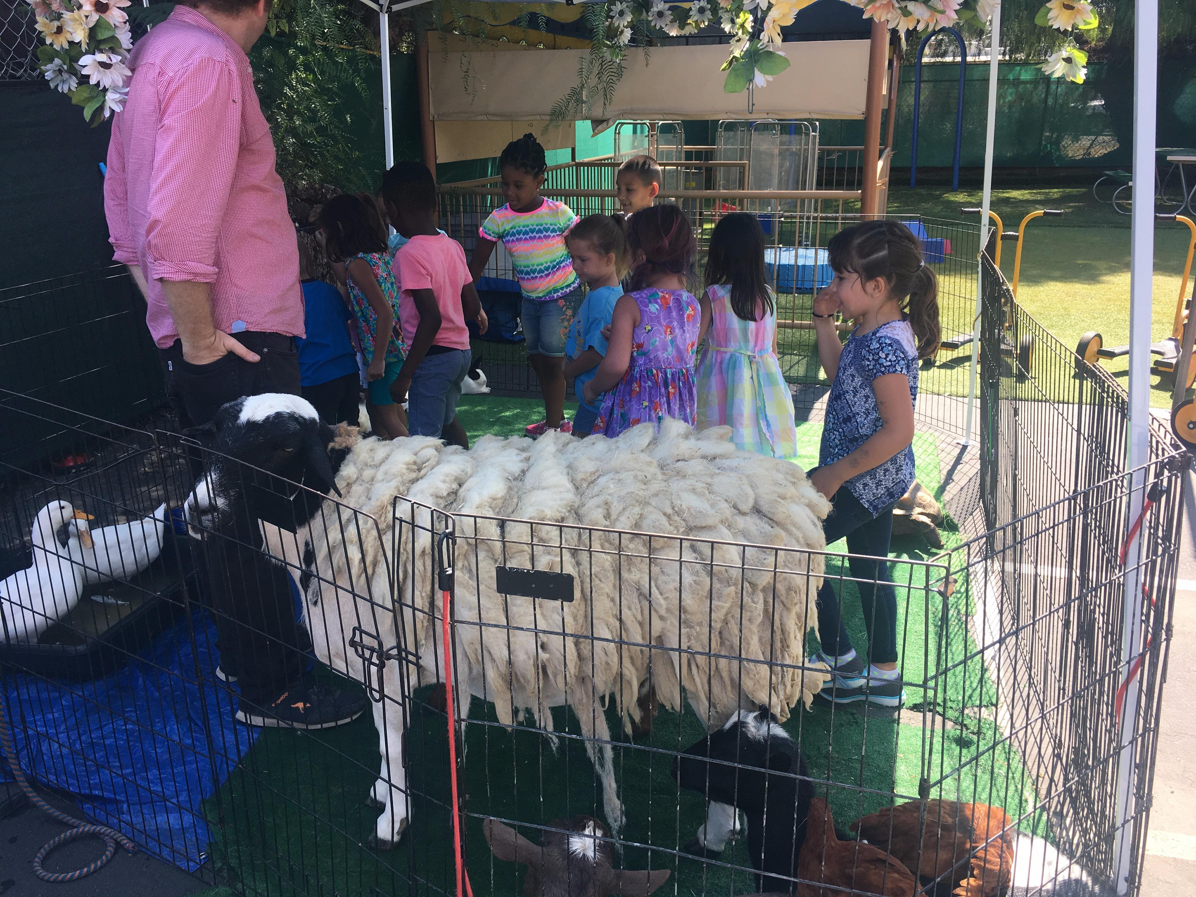 Sierra Preschool & After School image 7