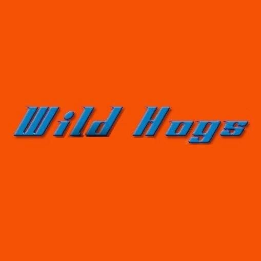 Wild Hogs Scooters