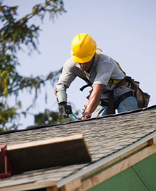 Chutes and Ladders Roofing