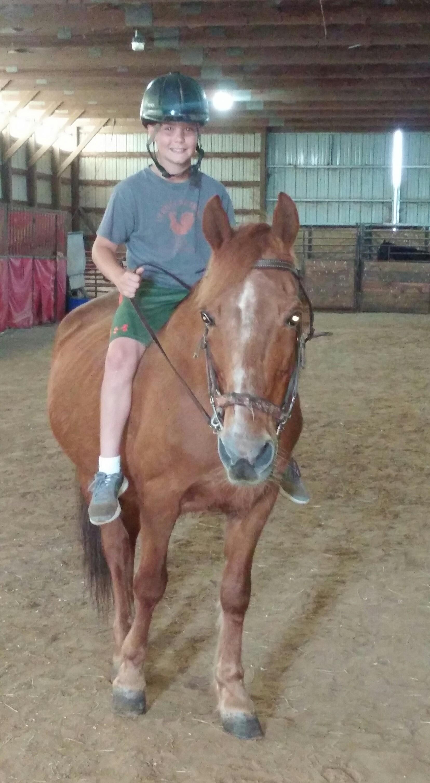 Wright-Way Equestrian Center Inc. image 4
