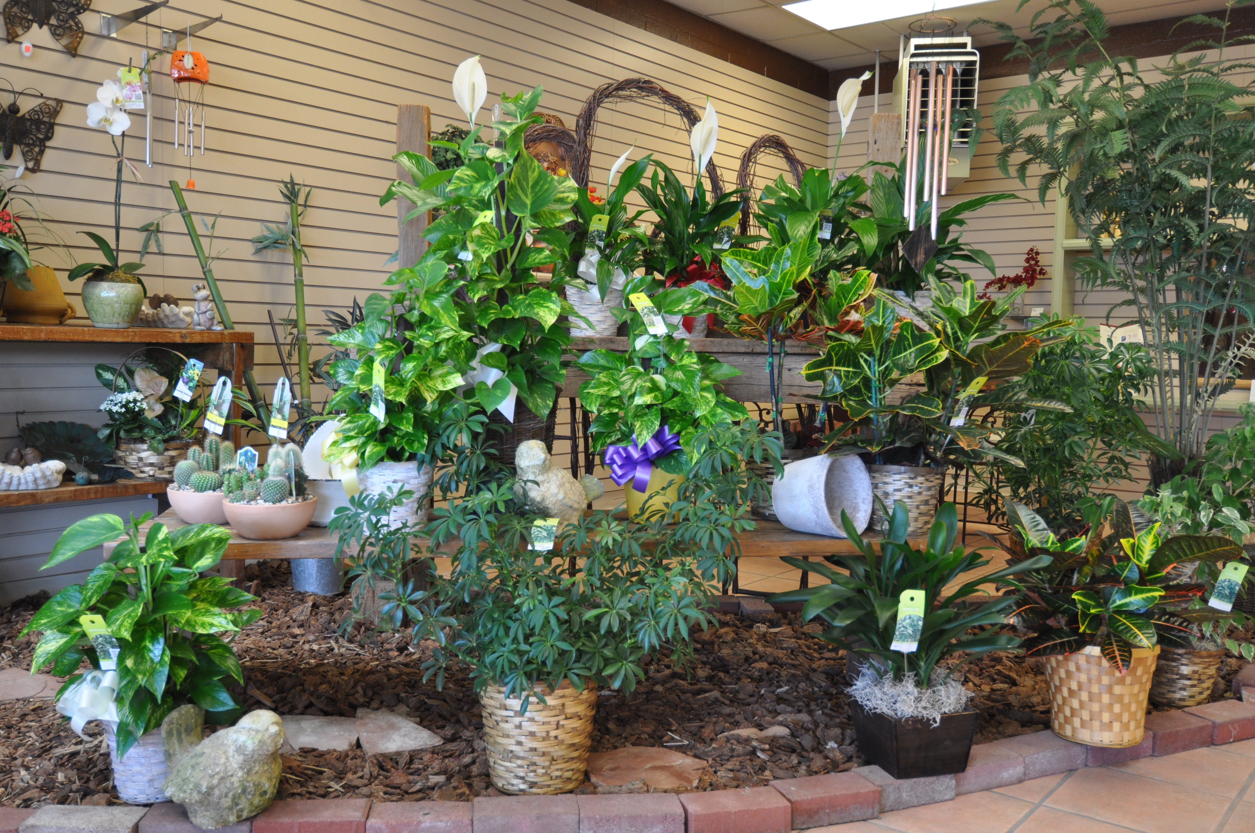 Peoples Flower Shops Far North Location image 12