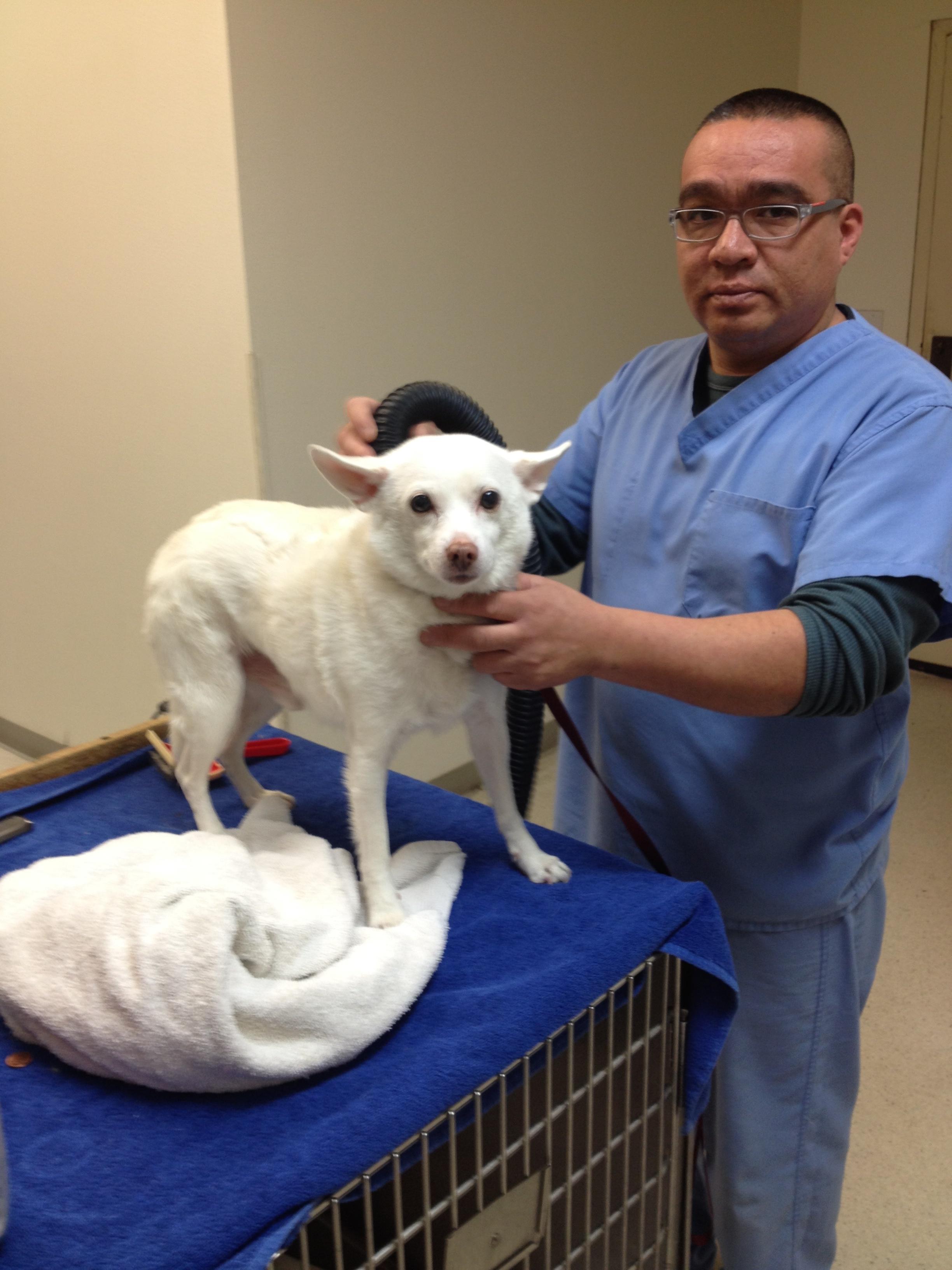 Orange Canyon Pet Clinic image 1