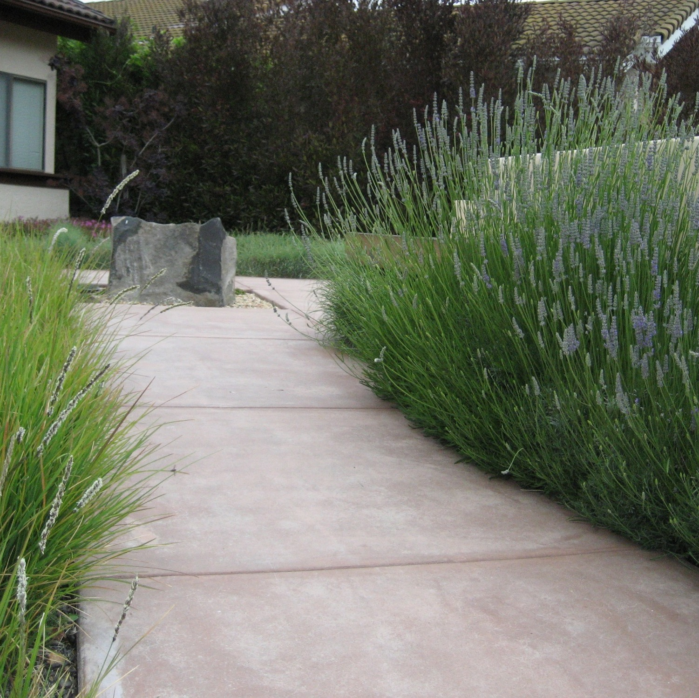 All Seasons Gardening & Landscaping image 15