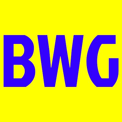 Biggers Wiley Garage Inc