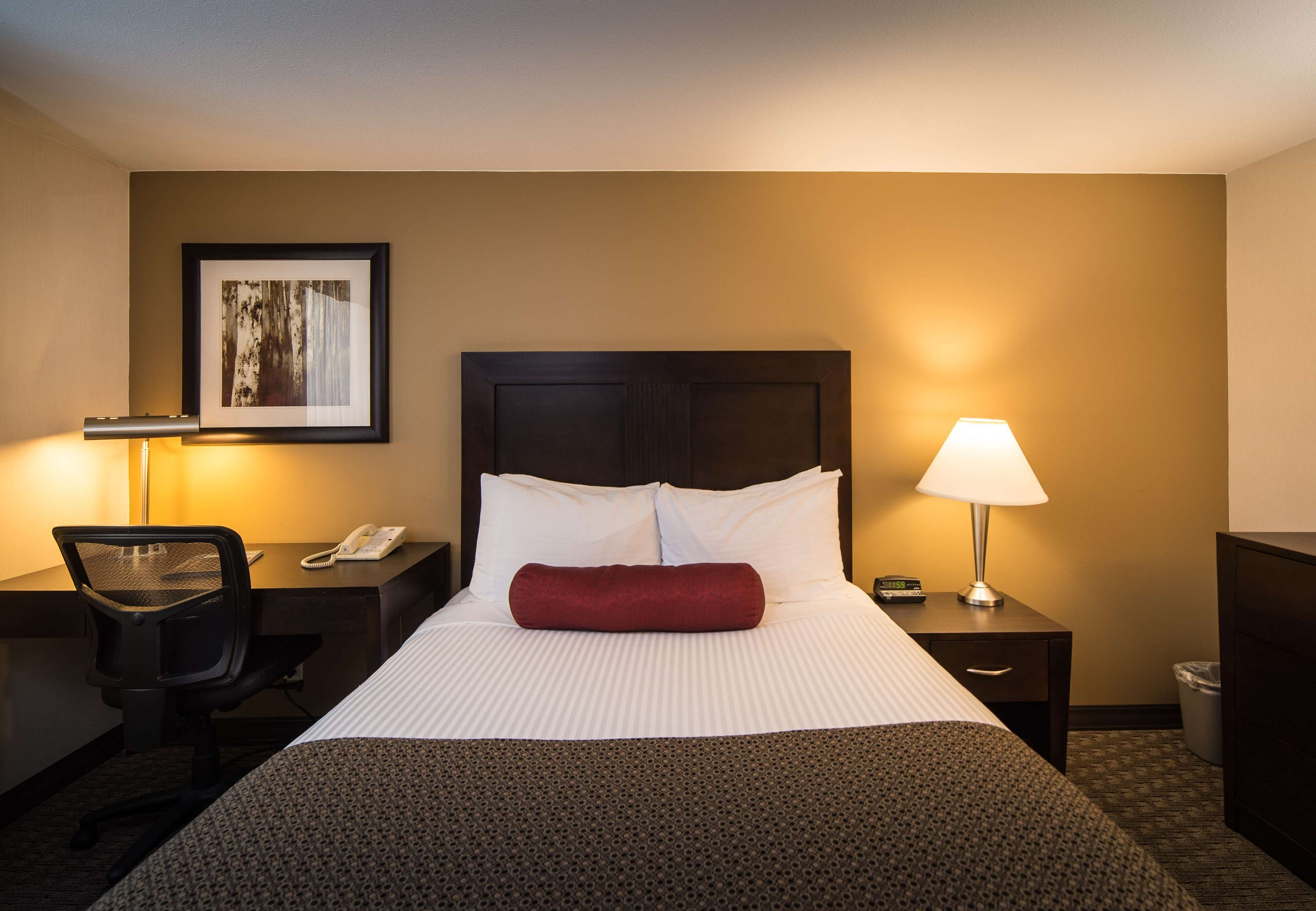 Best Western Plus Baker Street Inn & Convention Centre in Nelson: Small Queen Guest Room