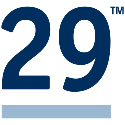 Rule29 Creative Agency