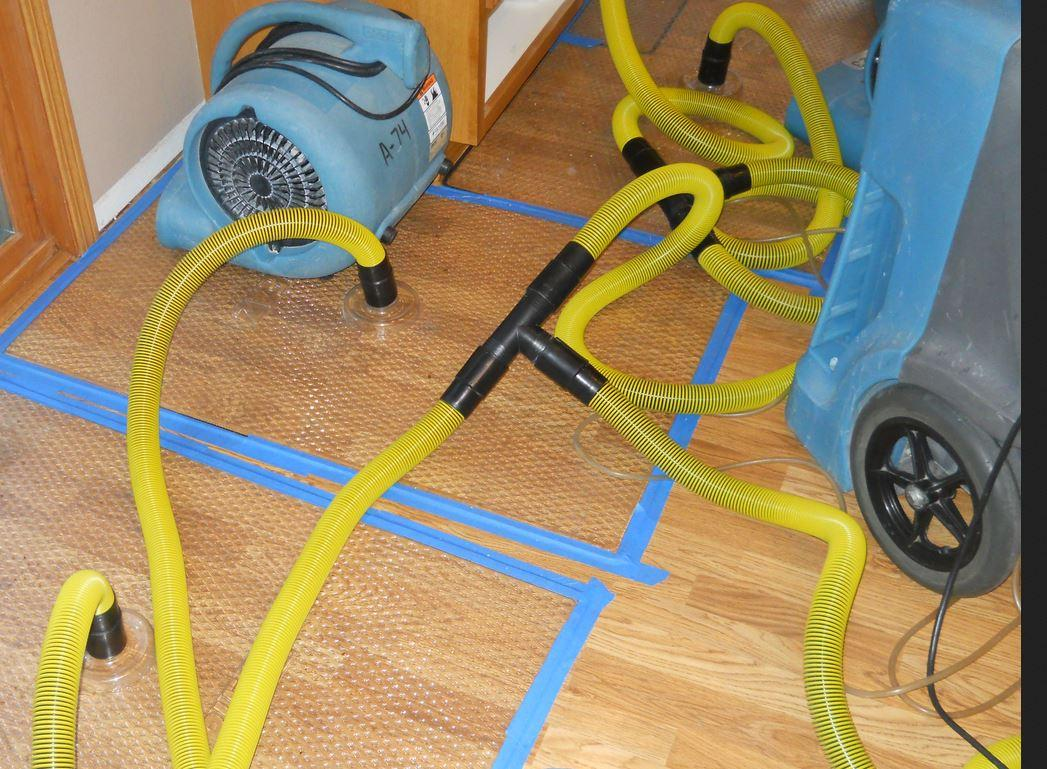 Image Result For Carpet Cleaners Fargo Nd