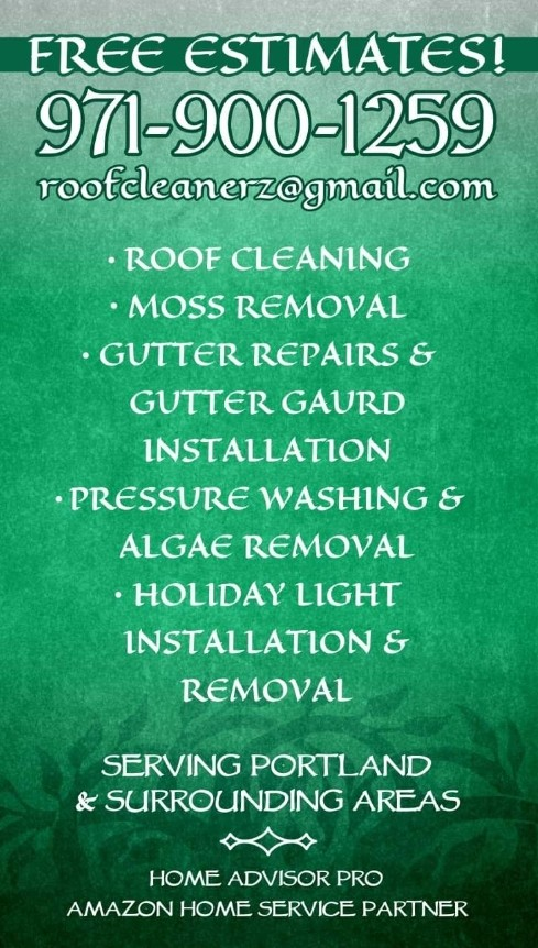 Charity's Roof and Gutter Cleaning, LLC