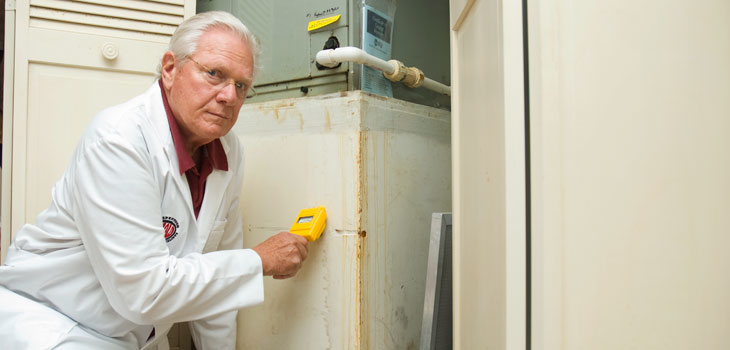 A+ Mold Inspection Specialists LLC image 4