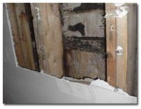 Guardian Home Inspections image 3
