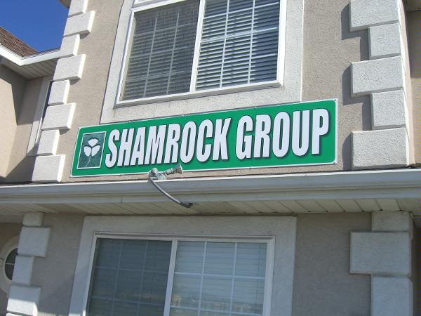 Shamrock auto group in pleasant grove ut 84062 citysearch for Grove motors in pleasant grove