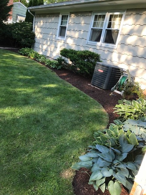 Rivera Brothers Landscaping image 1