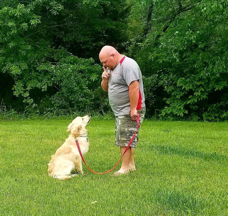 Wag Ur Tail Dog Training