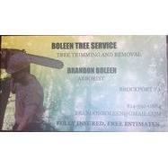 Boleen Tree Service