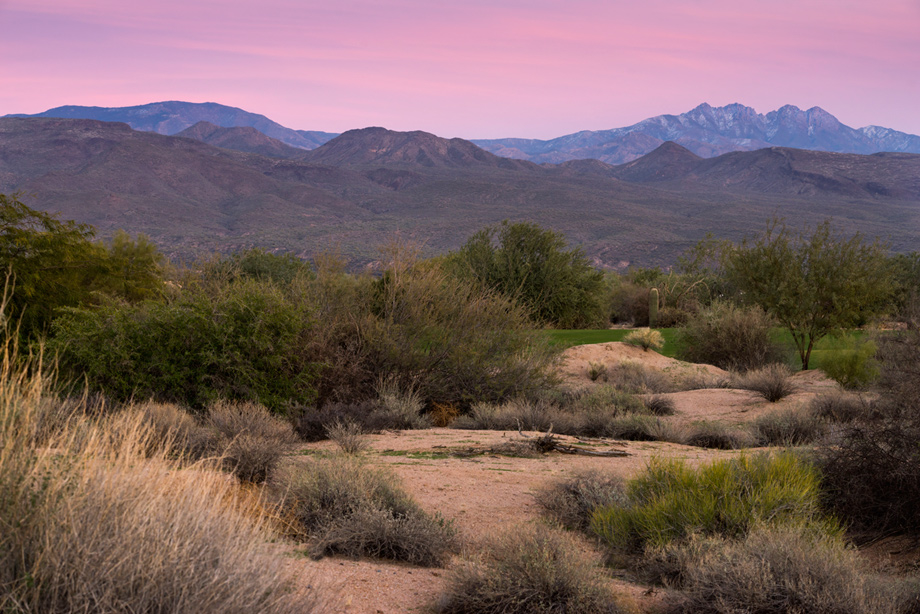 Toll Brothers at Verde River image 8