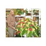 Lester's Florist
