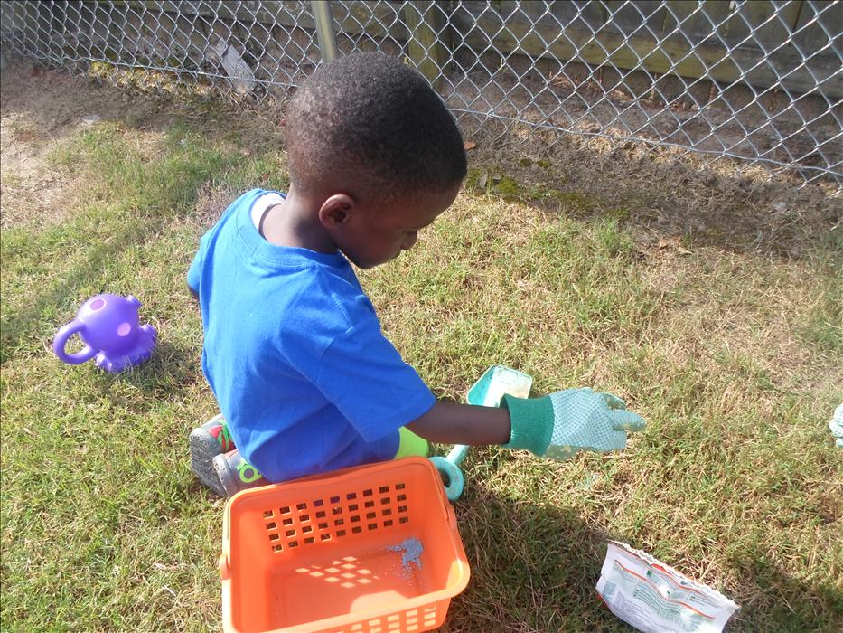 This is What Learning Looks Like: Building brain power as they learn about the world by observing, experimenting, and exploring nature.