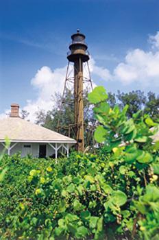 Best Western Fort Myers Inn & Suites image 20