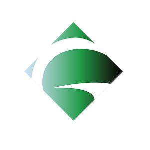 Greenlit Capital Asset Management