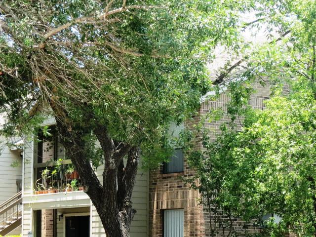 Silver Creek Apartments image 4
