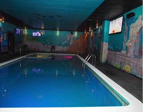 Denver Swim Club image 3