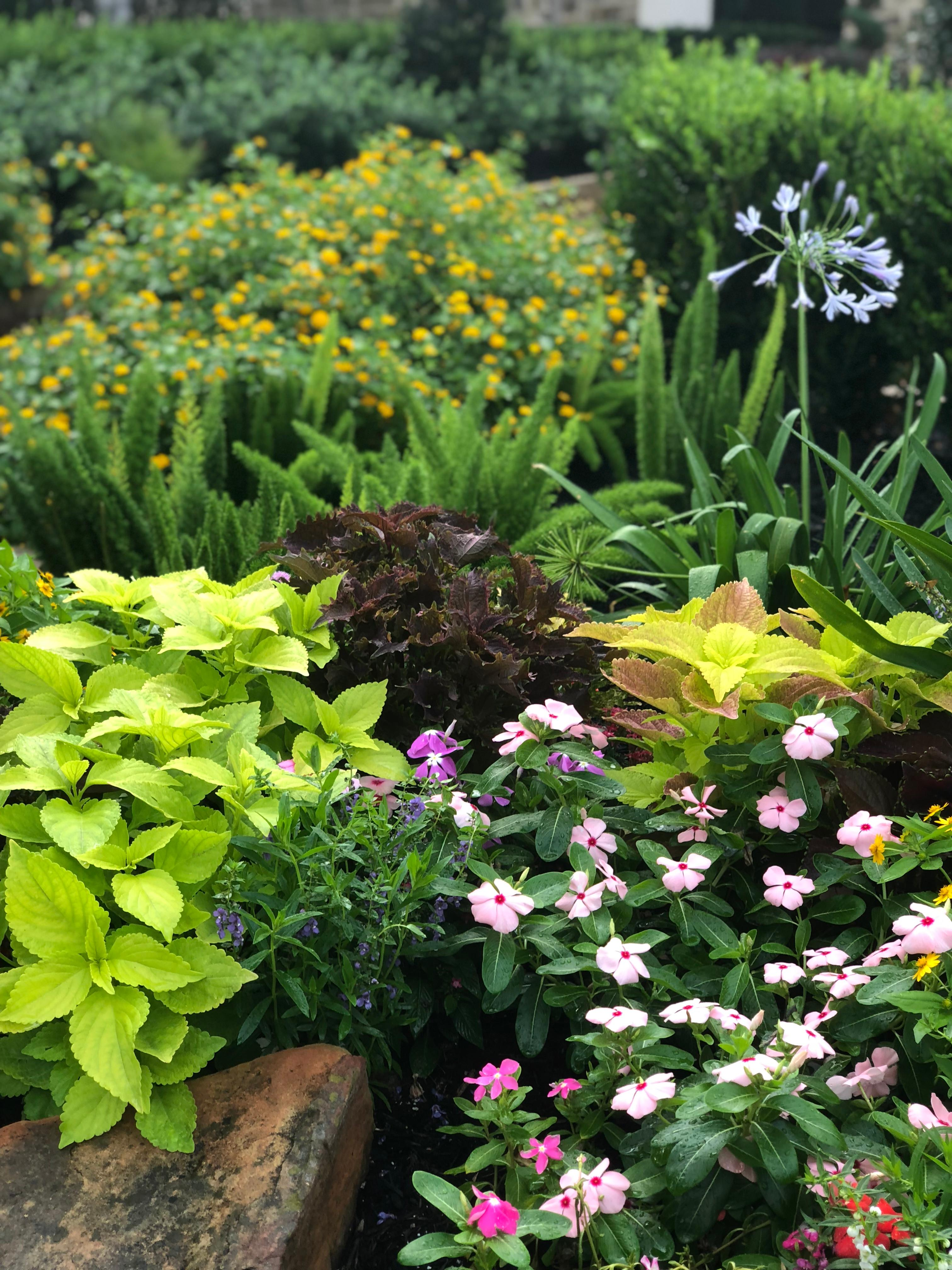 PGS Landscaping image 3