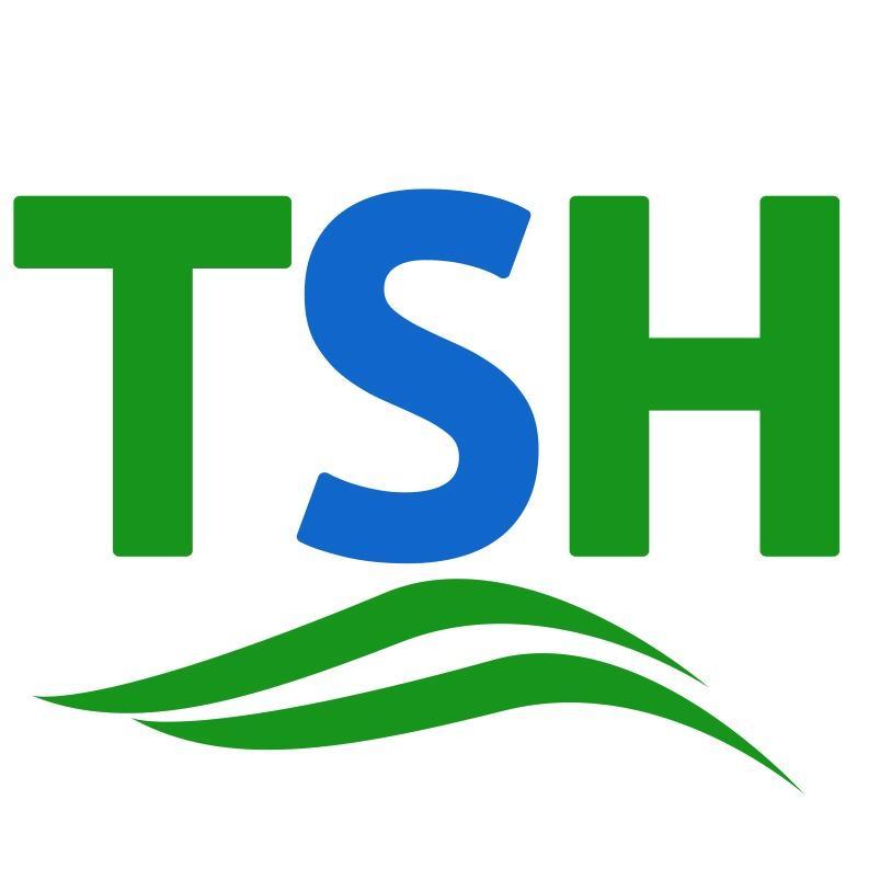 Tax Services of Hawaii Inc
