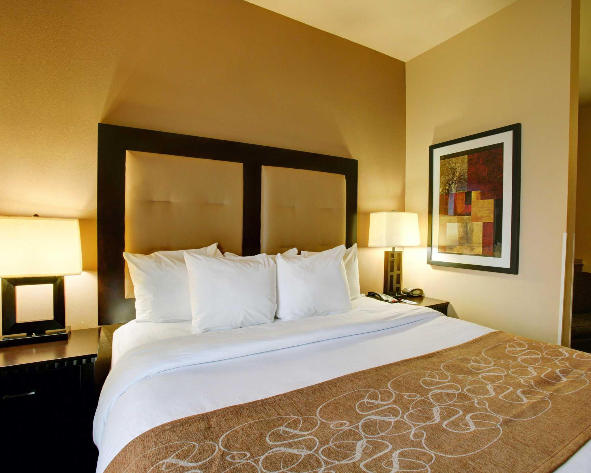 Comfort Suites Buda - Austin South image 13