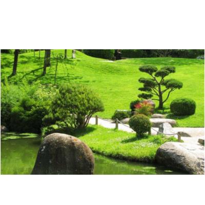 Gallo Alberto Manutenzione Giardini