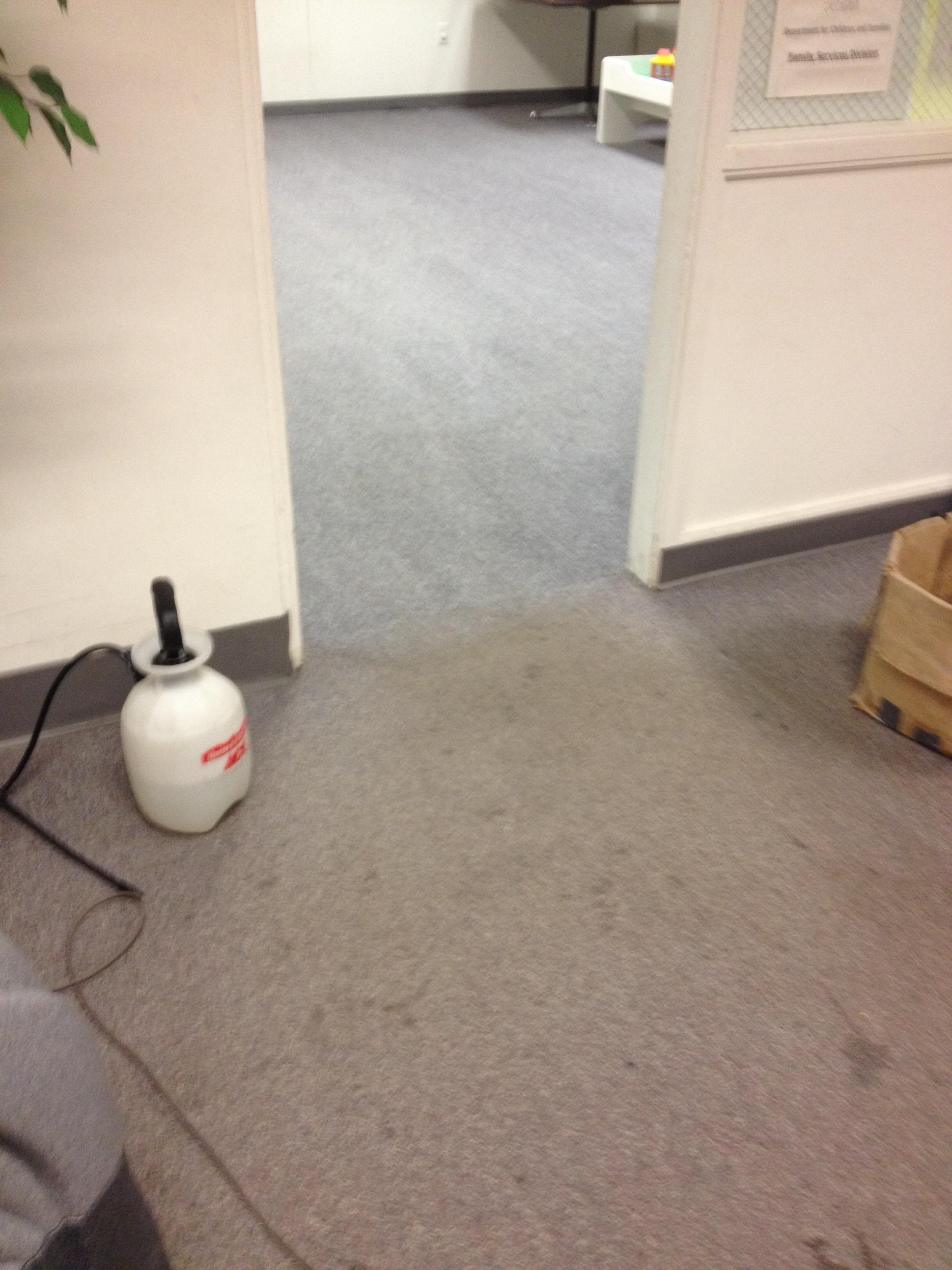 D&D Carpet Cleaning image 0