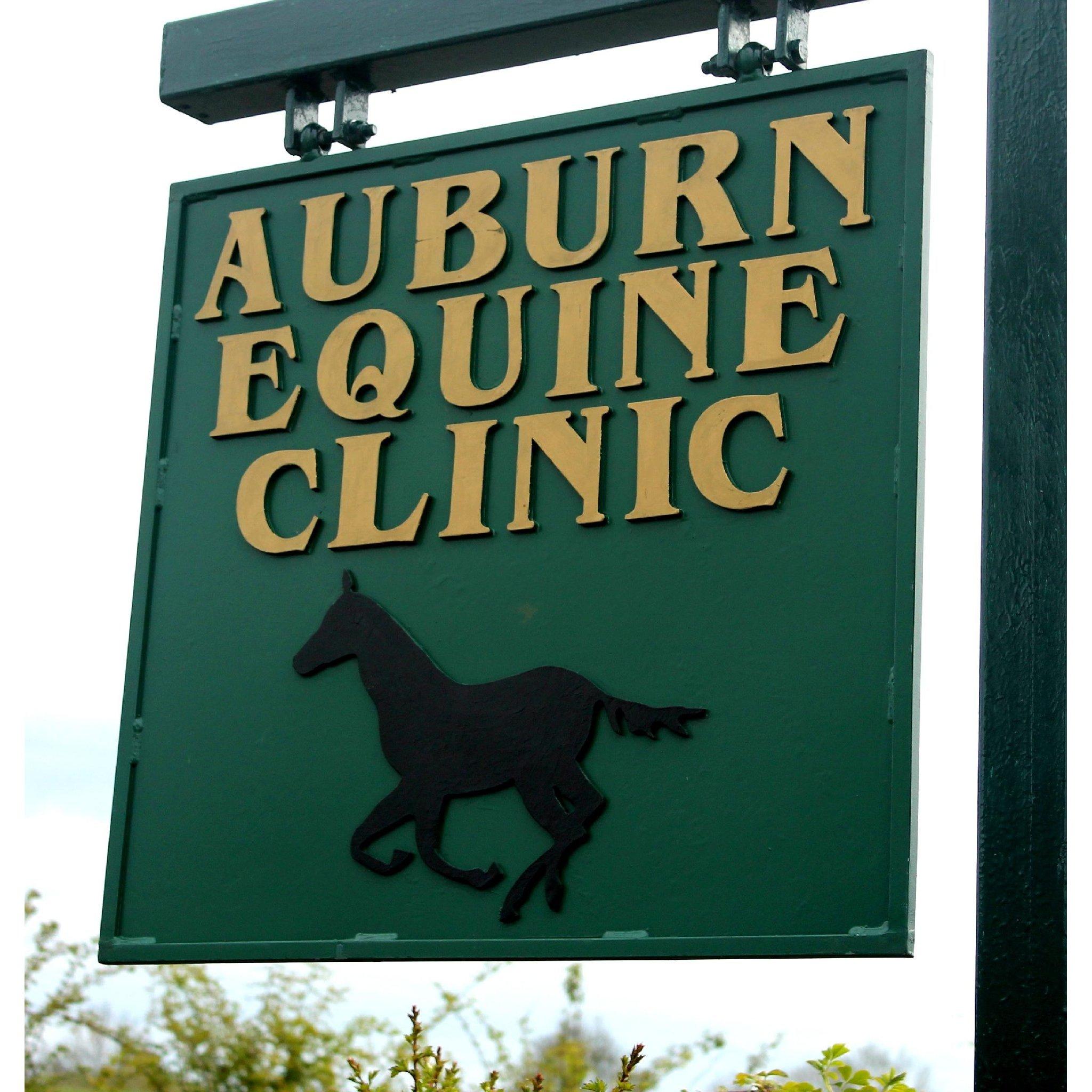 Auburn Equine Clinic Veterinary Pharmacies In Belfast