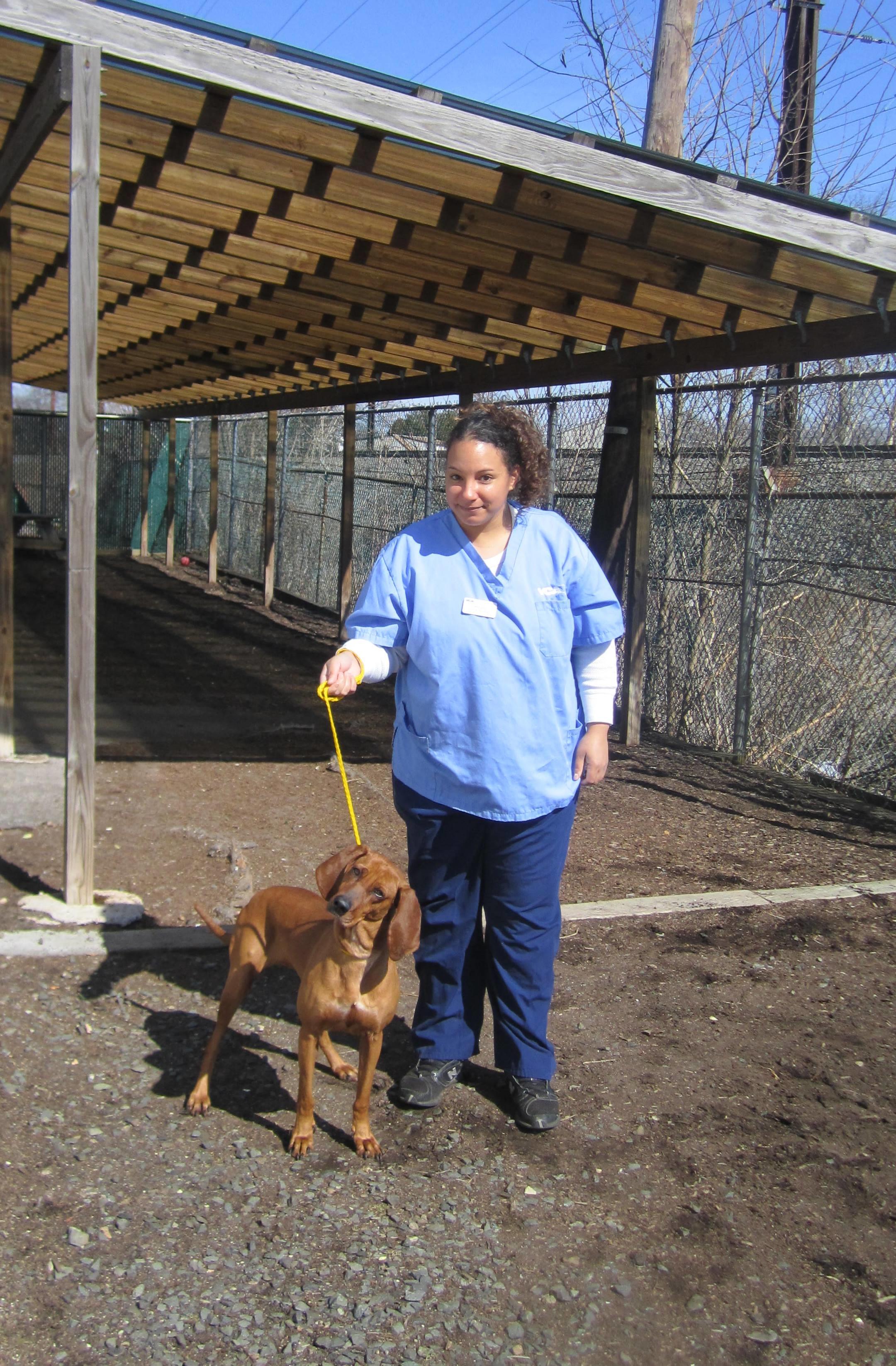 VCA Iselin Animal Hospital image 0