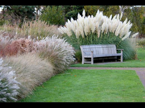 Wagner Gartengestaltung e.U. - Bewässerungsanlagen, Schwimmteiche u. Grünflächenbetreuung