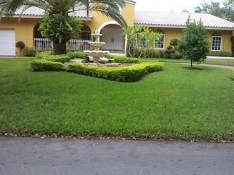 LoLo's Lawn Care