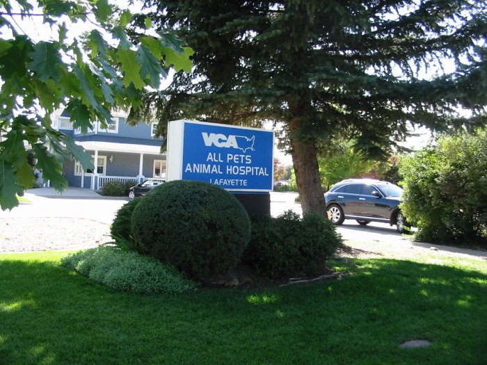 Vca All Pets Animal Hospital Lafayette 805 South Public Road