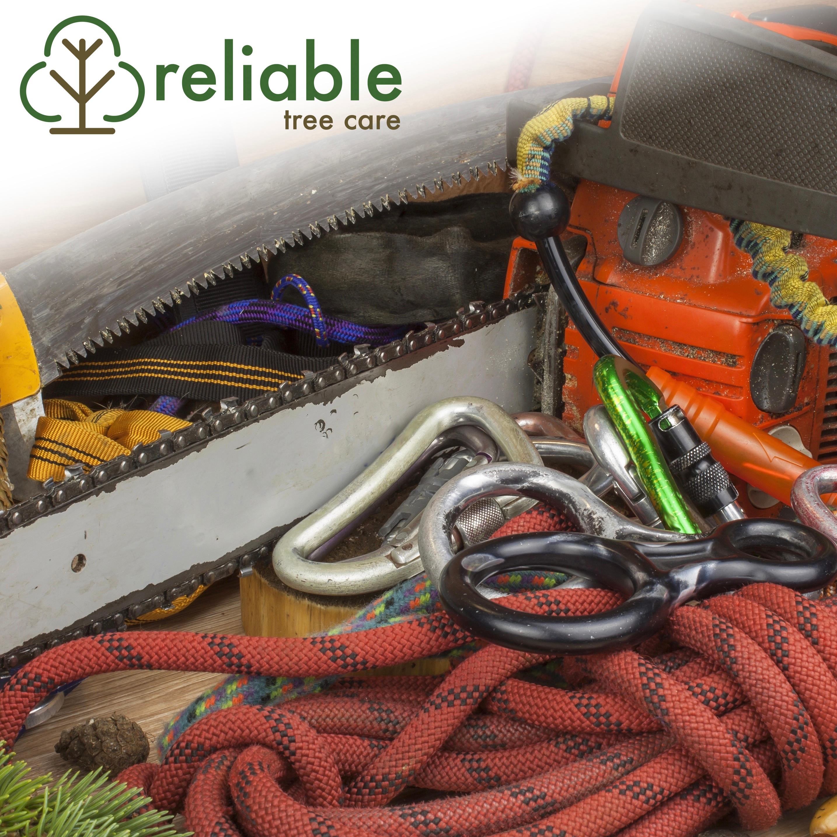 Reliable Tree Care and Removal image 2