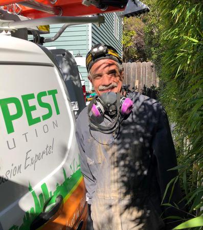 Image 5 | Bay Pest Solution