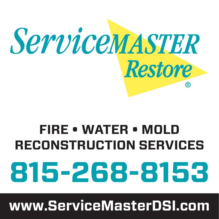 ServiceMaster DSI image 1