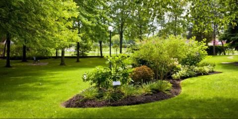 Landscape irrigation Experts