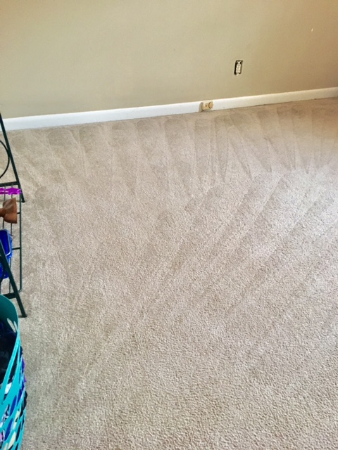 Stains Be Gone Carpet Cleaning, LLC image 0