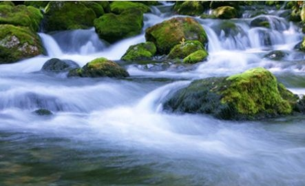 Water-Rite image 2