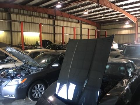Import Euro Automotive image 5